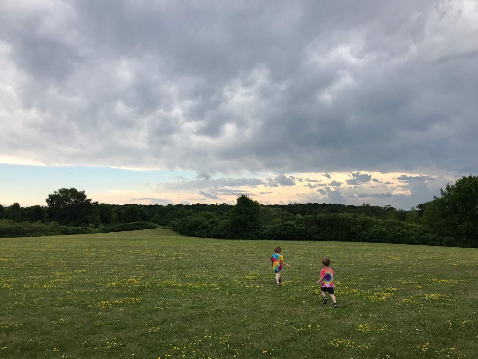 Picture of a green field with rolling hills. The sky is dark with storm clouds, but near the horizen, there is blue and pink and yellow. Emily P.G. Erickon's two young children run toward that horizen.